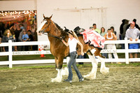 Wednesday 2014-Draft Horse Costume Class