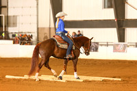 AQHA - Youth Ranch Riding