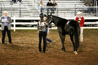 Wednesday 2014-4H Saddle Horse Contest Versatility