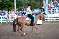 Wednesday 2014-4H Saddle Horse Performance Versatility Show