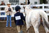 Wednesday 2014-Walk Trot English Show